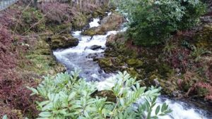 river-rydal-walk-bridge-december-2014